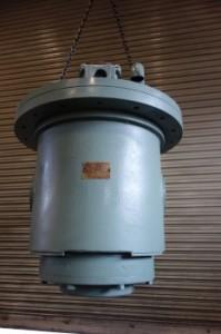 DSC03089 (233x350)